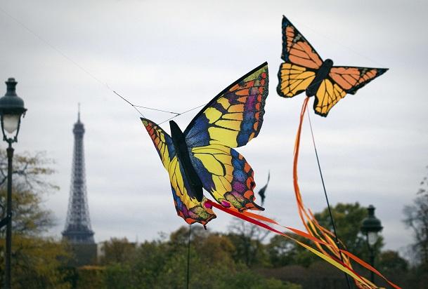 Butterfly-Kite-2