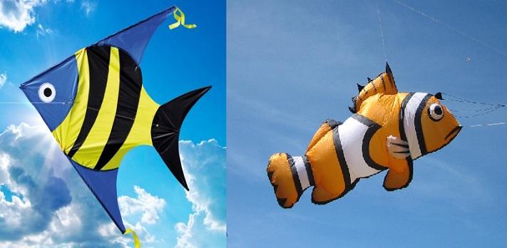 Fish-Kite-1