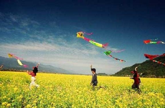Kite-childhood