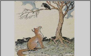 Fox-Crow